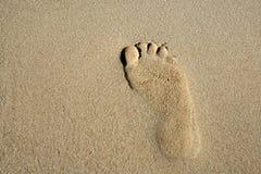 Orme nella sabbia Fotografie Stock Libere da Diritti