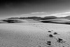 Orme nelle dune fotografie stock