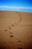 Orme in sabbia Immagini Stock Libere da Diritti