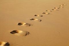 Orme sulla sabbia Immagini Stock