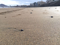 Orme sulla sabbia Immagine Stock