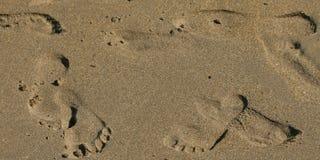 Orme sulla sabbia della spiaggia isolata Immagine Stock Libera da Diritti