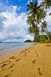 Orme sulla spiaggia abbandonata selvaggia Fotografia Stock