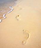 Orme sulla spiaggia sabbiosa lungo il mare Immagine Stock Libera da Diritti