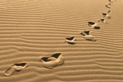 Orme sulle dune di sabbia Catena delle orme scalze sulla sabbia Orme umane sul fondo della sabbia Allontanarsi di punti del piede Fotografia Stock