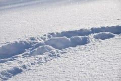 Orme umane nella neve Fotografia Stock Libera da Diritti