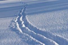 Orme umane nella neve sulla pianura Fotografia Stock Libera da Diritti