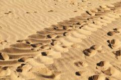 Orme umane nella sabbia sulla spiaggia, fondo di struttura fotografia stock libera da diritti