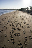 Orme umane in sabbia sulla spiaggia Fotografie Stock