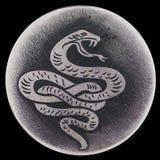Ormen - ett symbol av vishet och vitaliteten, förmyndareliv, hälsa Arkivfoto