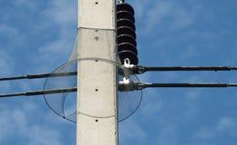Ormvakt med den elektriska stolpen Royaltyfri Bild