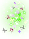 Ornament. Colorful year flowerses and insect -an illustration Stock Photos