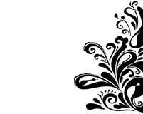 Ornament. A Graphic vintage scroll design vector illustration