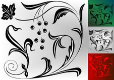 Ornament. Green,red,black-white design ornament Royalty Free Stock Photos