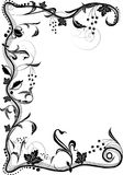 Ornament. Black and white design ornament Royalty Free Stock Images