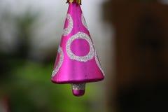 Ornament Obrazy Royalty Free