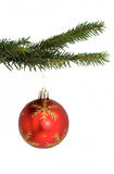 Ornament. Ball ornament pine tree stretch royalty free stock photo