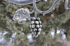 The ornament on the background. The vine trees in the background Stock Images