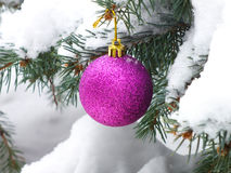 Ornament on the Christmas tree Royalty Free Stock Photos