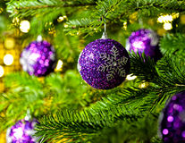 Ornament in a Christmas tree Stock Image