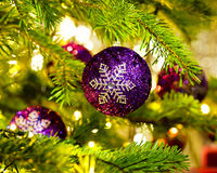 Ornament in a Christmas tree Royalty Free Stock Photography