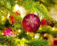 Ornament in a Christmas tree Stock Photography