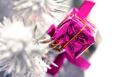 Ornament on Christmas tree branches with snow Stock Image