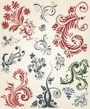 Ornament decoration floral design Stock Images
