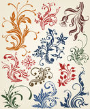 Ornament decoration floral design Royalty Free Stock Images