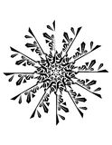 Ornament. Drawing Floral Snowfllack for Background Royalty Free Stock Photo