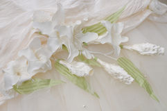 Ornament on a dress of the bride. Royalty Free Stock Image