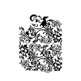 Ornament Floral Vector Ilustration.  Stock Photos