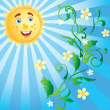 Ornament with flowers and sunshine. Stock Images