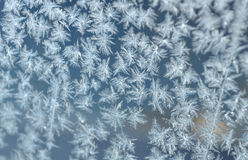 Ornament of frost on a window. This photograph represent an ornament of frost on a window. Focus is on center of photograph stock image