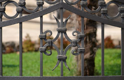 Ornament on the gate Royalty Free Stock Image