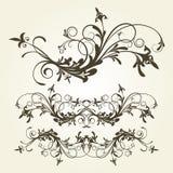 ornament kwiecisty Zdjęcia Royalty Free