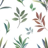 Ornament from leaves and branches. stock illustration