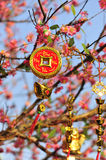 Ornament of lucky coin and gold ingots on the peach tree Stock Photos
