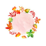 Ornament made of drawn autumn leaves Royalty Free Stock Images