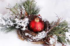Ornament in nest Royalty Free Stock Photography