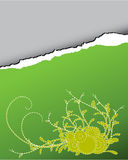 ornament paper tear διανυσματική απεικόνιση