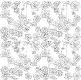 Ornament pattern gentle black and white flowers Royalty Free Stock Photos
