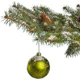 Ornament on a pine tree branch Stock Photography