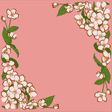 Ornament of pink apple flowers with green leaves. Flower frame Stock Image