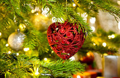 Ornament in a real Christmas tree Stock Image