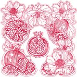 Ornament red pomegranates and flowers Royalty Free Stock Photo