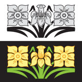 Ornament with stylized narcissus flowers. Stock Photography