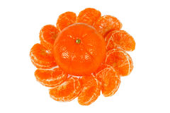 Ornament of tangerine slices Stock Image