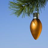 Ornament on tree. Royalty Free Stock Photography