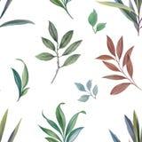 Ornament van bladeren en takken stock illustratie